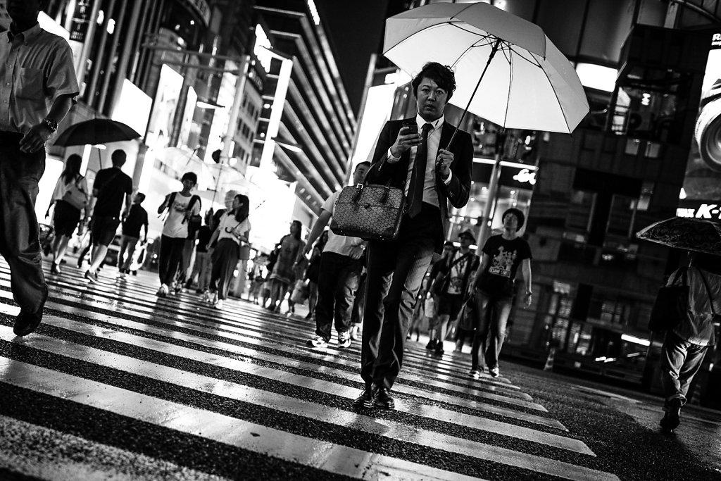 Light Umbrella